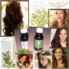 Mira Hair Oil – The Ancient Hair Growing Secrets Of The India Brahmi Girls Who Have The Longest Most Beautiful Finally Revealed! Hair Growth Oil, Natural Hair Growth, Natural Hair Styles, Mira Hair Oil, How To Grow Your Hair Faster, Hair Remedies, Hair Health, Hair Journey, Grow Hair