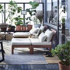 Två loungefåtöljer av massiv brunlaserad akacia på en uteplats med mycket växter.