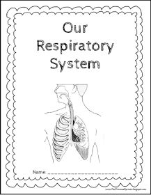 The Respiratory System (Blank) Printable Printable (6th