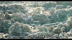 """Chemtrails the secret war Dopo l´Italia e la Francia, anche in Germania e´stato pubblicato il documentario di """"Tancher Enemy"""""""