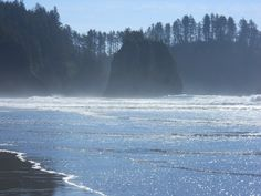Second Beach, La Push, WA. The most gorgeous one. Long trek through the forest so worth it