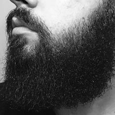 Tips On How To Grow A Beard Faster Than Usual So you are considering growing your beard? For men who are looking for ways on how to grow their beard, they must understand first that this is not an easy task and that Beard Growing Tips, Long Beard Styles, Long Beards, Beard Growth, Hair Styles, Easy, Men, Books, Hair Plait Styles