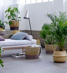 Kwiaty w domu-prosty sposób na odmianę wnętrza, fot.mat.pras. Bloomingville