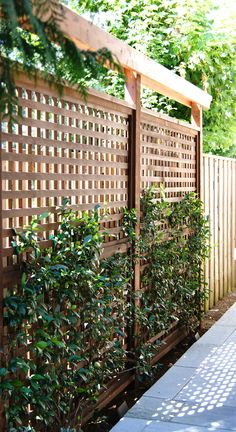 Pergola Bioclimatique PergolasArchitecture Key 8181324158 is part of Backyard privacy - Privacy Fence Designs, Privacy Landscaping, Outdoor Privacy, Backyard Privacy, Backyard Fences, Backyard Ideas, Fence Ideas, Diy Fence, Privacy Fences