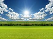Sun Over a Green Field