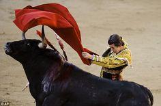 Los colombianos ver las corridas de toros en la plaza de toros.