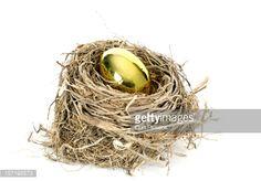 Stock Photo : Nest Egg