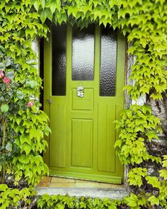 Front Door Paint Colors - Want a quick makeover? Paint your front door a different color. Here a pretty front door color ideas to improve your home's curb appeal and add more style! Cool Doors, The Doors, Unique Doors, Entrance Doors, Doorway, Windows And Doors, Front Doors, Main Entrance, Main Door