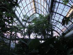 Lyon, jardin botanique by Modetico 2013