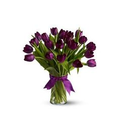 Order Passionate Purple Tulips - from Bloomers, your local Richland florist. For fresh and fast flower delivery throughout Richland, MI area. Purple Tulips, Tulips Flowers, Fresh Flowers, Spring Flowers, Planting Flowers, Beautiful Flowers, Purple Plants, Tulips In Vase, Send Flowers