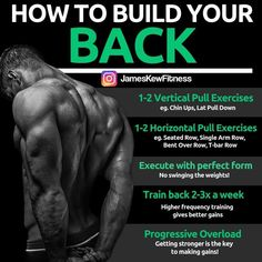 back workout, back routine, how to gain muscle, muscle mass One Arm Row, Single Arm Row, Weight Training Programs, Weight Training Workouts, Lifting Workouts, Workout Exercises, Workout Tips, Gym Workouts, Back Routine