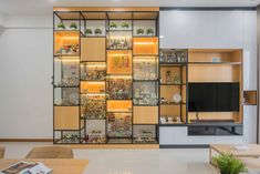 Glass Display Shelves, Lego Display, Lego Room Decor, Tv Feature Wall, Lego Bedroom, Tiny Apartments, Gamer Room, Displaying Collections, Cabinet Design