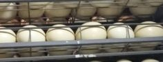 Deformed Ostrich Egg = Deformed Chick ‹ Safari Ostrich Show Farm Ostriches, Safari, Eggs, Tours, Food, Essen, Egg, Meals, Yemek