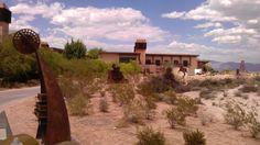 Metallic desert dwellers #SpringsPreserve