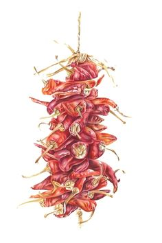 Chillies by Gill Winch