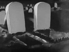 gif Gifmovie Black and White vintage horror cartoon vintage cartoons Halloween Gif, Halloween Pictures, Halloween Skeletons, Vintage Halloween, Halloween Painting, Halloween Ideas, Happy Halloween, Vintage Cartoons, Old Cartoons