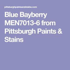 Blue Bayberry MEN7013-6 from Pittsburgh Paints & Stains