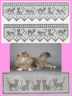 Community wall photos Community wall photos The post Community wall photos appeared first on Gardinen ideen. Filet Crochet, Gato Crochet, Crochet Borders, Crochet Chart, Knit Crochet, Crochet Squares, Knitting Charts, Knitting Patterns, Crochet Edgings