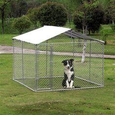 Dog Training Agility Dog Training Melbourne Fl Dog Training