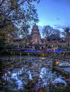 View from the Lotus Cafe, Ubud, Bali: