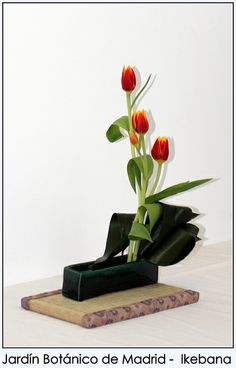 japn tulipanes rojos arte floral ikebana diseos florales bonsai arreglos florales madrid florales