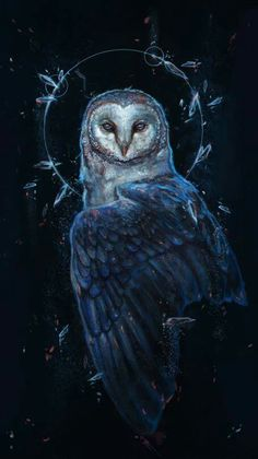 owl art projects for kids ; owl art for kids ; Animal Drawings, Art Drawings, Owl Artwork, Owl Pictures, Beautiful Owl, Animal Wallpaper, Owl Wallpaper, Mythical Creatures, Dark Art