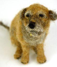 Domenica More Gordon | Dog Shows | SOLD DOGS