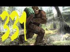 Sasquatch Chronicles 2017 // SC EP: 331 MY ENCOUNTERS [Bigfoot Hotspot Radio]