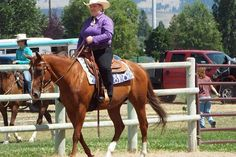 CLASSY Zippo Pine Bar, 14.3 APHA BS Mare.   ONE owner…so she is special.  Bonnie (of Bonnie & Clyde) has been shown in Open Western Pleasure and Trail.  She's great with other horses, rides willing and with a soft touch.