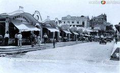 El mercado Tampico