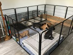 23 Amazing Dog Kennels And Crates For Dogs Dog Kennel Small Size Dog 10 Lbs Puppy Playpen, Puppy Kennel, Dog Kennel Cover, Diy Dog Kennel, Kennel Ideas, Dog Whelping Box, Whelping Puppies, Puppy Nursery, Puppy Room