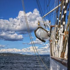 #tallships #sailing #freedom Tall Ships, Sailing Ships, Freedom, Boat, Portrait, Photography, Life, Liberty, Political Freedom