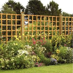 Panel Trellis for privacy screening for patio.  Grow roses/clematis up it for additional privacy.