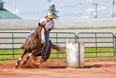 Fast, furious and fun. That barrel racing to the average spectator, who cheers for each competitor team as the horse and rider amp; While the pattern barrel racers . Barrel Racing Exercises, Barrel Racing Tips, Barrel Racing Horses, Barrel Horse, Race Training, Horse Training, Training Equipment, Marathon Training, Training Exercises