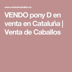 VENDO pony D en venta en Cataluña | Venta de Caballos