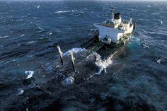 Naufrage de l'Erika le 12 Décembre 1999, avec 22.000 tonnes de fioul lourd.