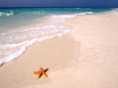 Grayton Beach~Santa Rosa Florida