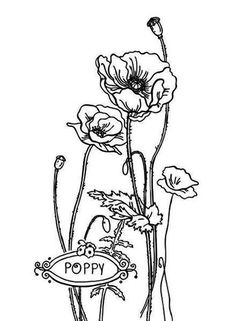 Amazing Picture Of California Poppy Coloring Page : Kids Play Color Printable Flower Coloring Pages, Coloring Pages For Kids, Coloring Sheets, Poppy Coloring Page, Tree Coloring Page, Veterans Day Poppy, Valentines Day Coloring Page, Princess Coloring Pages, Pillowcase Pattern