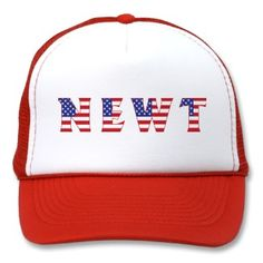 NEWT - Red White & Blue Hat