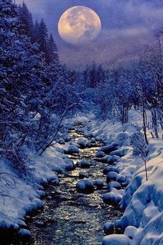 Moon over  Winter Creek by  Peter From