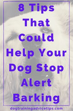 8 Tips That Could Help Your Dog Stop Alert Barking - Dog Training Advice Tips All Dogs, I Love Dogs, Puppy Love, Dogs And Puppies, Training Your Puppy, Dog Training Tips, Cave Animals, Australian Shepherd Training, Dog Information