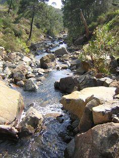 Los ríos construyen sus propios caminos. Jesús Duarte
