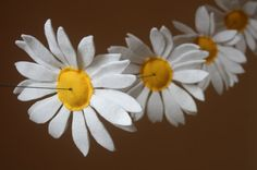 Flower Garland  - Daisy Chain. going to make put of paper
