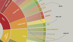 Интерактивное колесо вкусов, основанное на Coffee Taster's Flavor Wheel (2016) и World Coffee Research Sensory Lexicon (first edt. 2016) от SCAA и WCR.