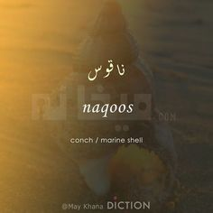 Urdu Words With Meaning, Hindi Words, Urdu Love Words, Persian Language, Arabic Language, Poem Quotes, Poems, Words In Different Languages, Unusual Words