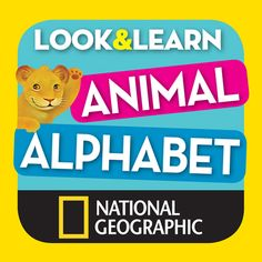 """I use this picture to elaborate a book about animals with my pupils! Eac pupil studies one animal and include them in this """"book"""" they're more motivated with the idea that it's a national geographic book! XD"""