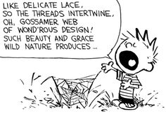Calvin and Hobbes, Calvin the Poet (1 of 2 DA) - Like delicate lace, so the threads intertwine, oh, gossamer web of wond'rous design! Such beauty and grace wild nature produces...