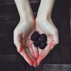 maria eugênia (@blueberryfinds) • Instagram photos and videos Vegan Lifestyle, Plant Based Diet, Cruelty Free, Photo And Video, Fruit, Videos, Photos, Instagram, Food