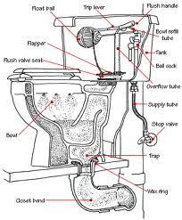 Bathroom Plumbing Guide Collection how to fix a leaky or runny toilet | toilet, anatomy and house