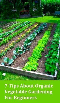 The Best Organic Gardening Tips  #OrganicGardeningTips